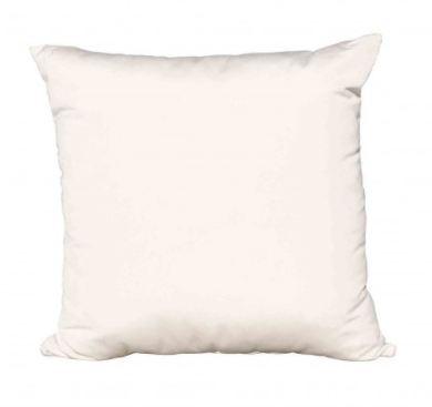 16x16 Throw Pillow