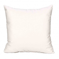 18x18 Throw Pillow