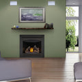 Napoleon Direct Vent Gas Fireplace - B36 Ascent 36