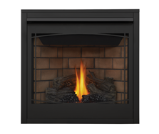 Napoleon Direct Vent Gas Fireplace - Ascent 42 B42 - Zen Decorative Front
