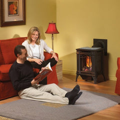 Napoleon Direct Vent Gas Stove - GDS20 Arlington