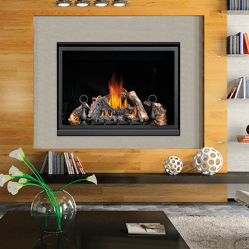 Napoleon HD46 Clean Face Gas Fireplace