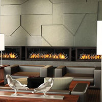Napoleon Direct Vent Fireplace - LHD62
