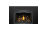 Napoleon Gas Fireplace Insert - Oakville 3 with Small Arched Charcoal Faceplate