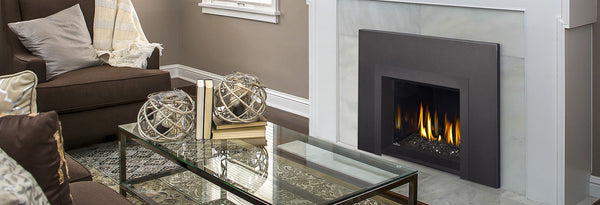 Napoleon Gas Fireplace Insert - Oakville Series