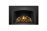 Napoleon Gas Fireplace Insert - Oakville X4 with Small Arched Charcoal Faceplate