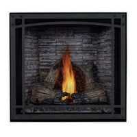 Napoleon Direct Vent Fireplace - HDX53 STARfire 52 - Decorative Front with Screen