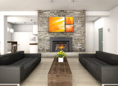 Napoleon Gas Fireplace Insert - XIR3-1  Infra Red Series