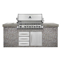 Napoleon Built In PRO665RB Gas Barbecue