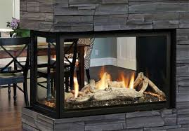Marquis Direct Vent Fireplace - Atrium