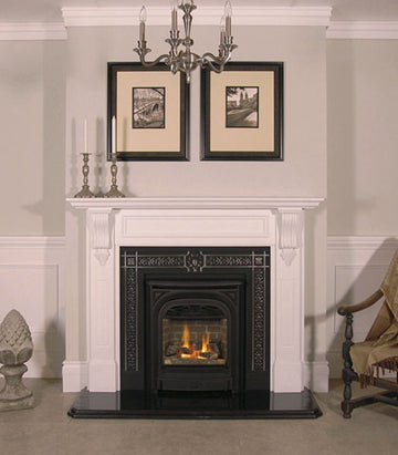 President Zero Clearance Gas Fireplace
