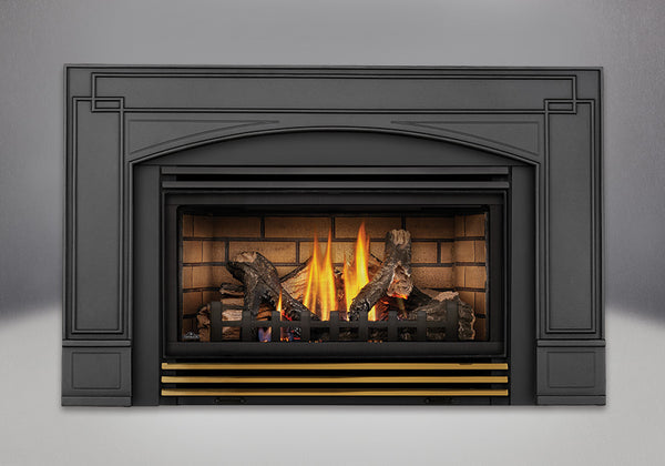 Napoleon Gas Fireplace Insert GDI30 with Arched Cast Iron Surround
