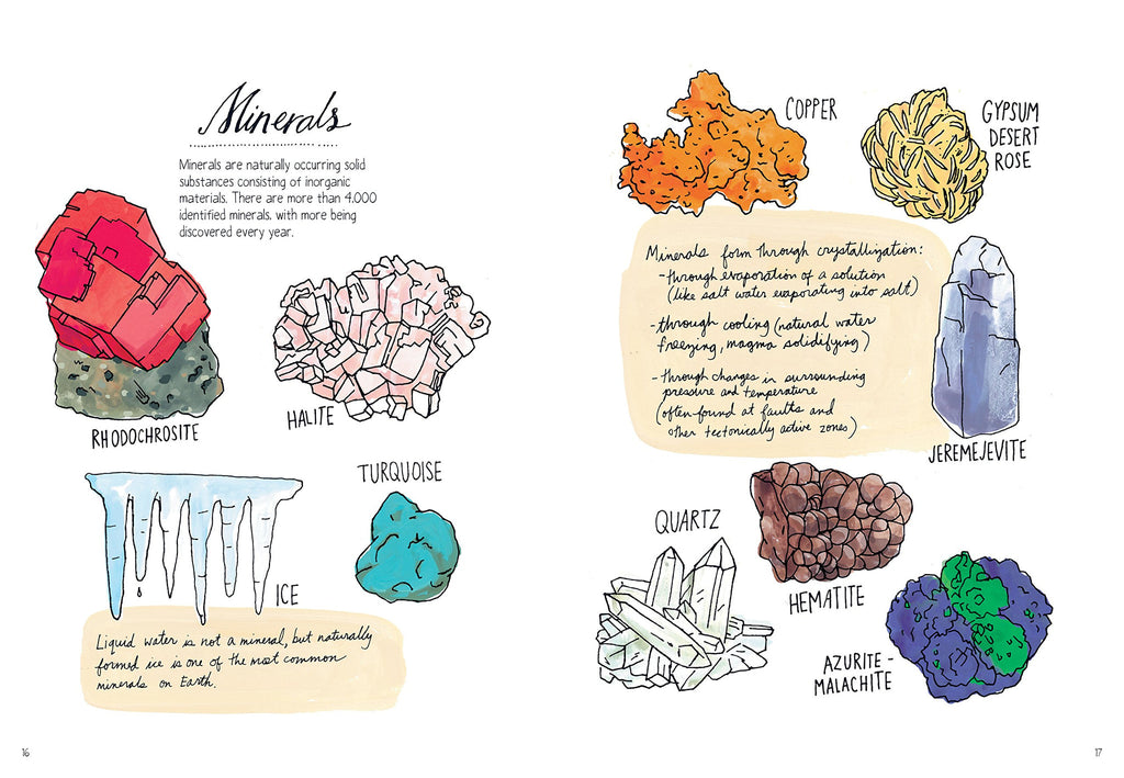 Nature Anatomy | wasecabiomes