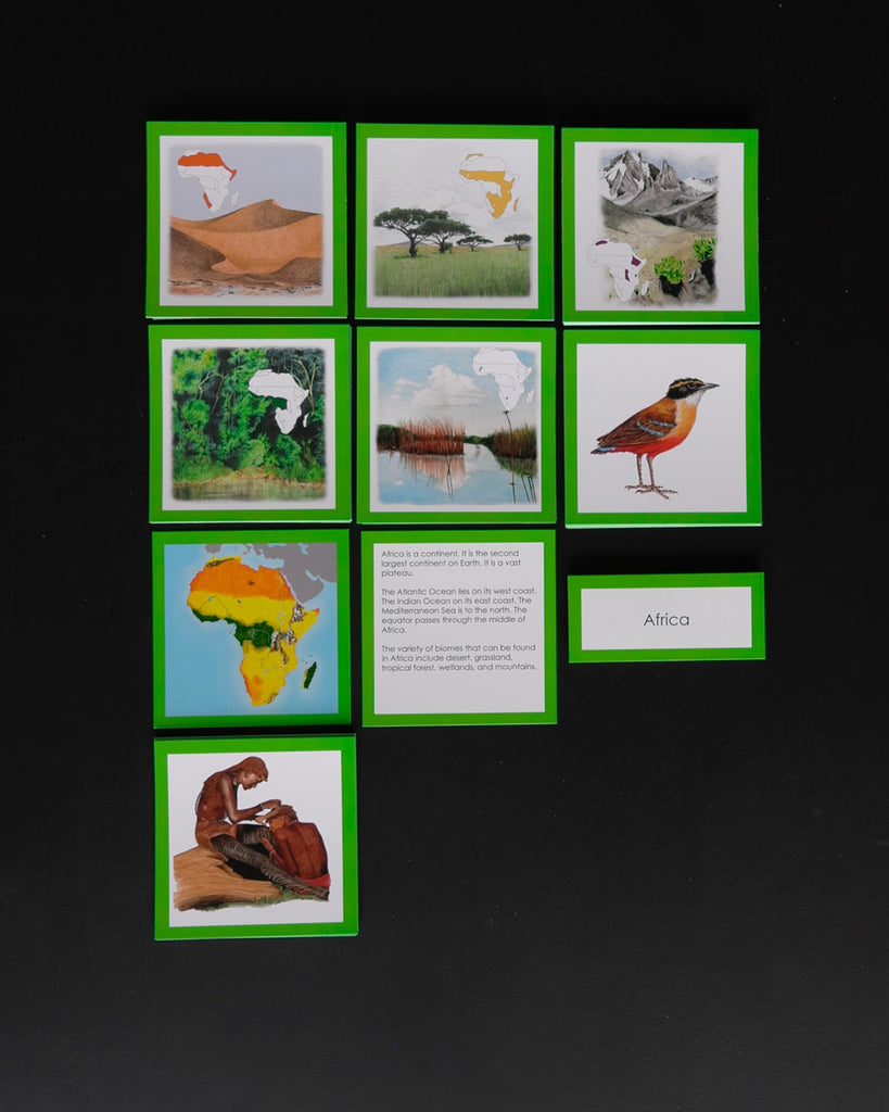 Africa Biome Cards-Elementary