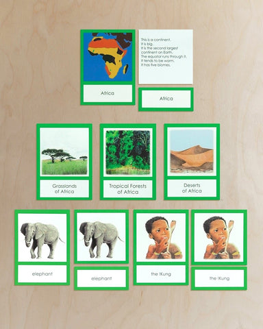 Africa Biome Cards-Primary