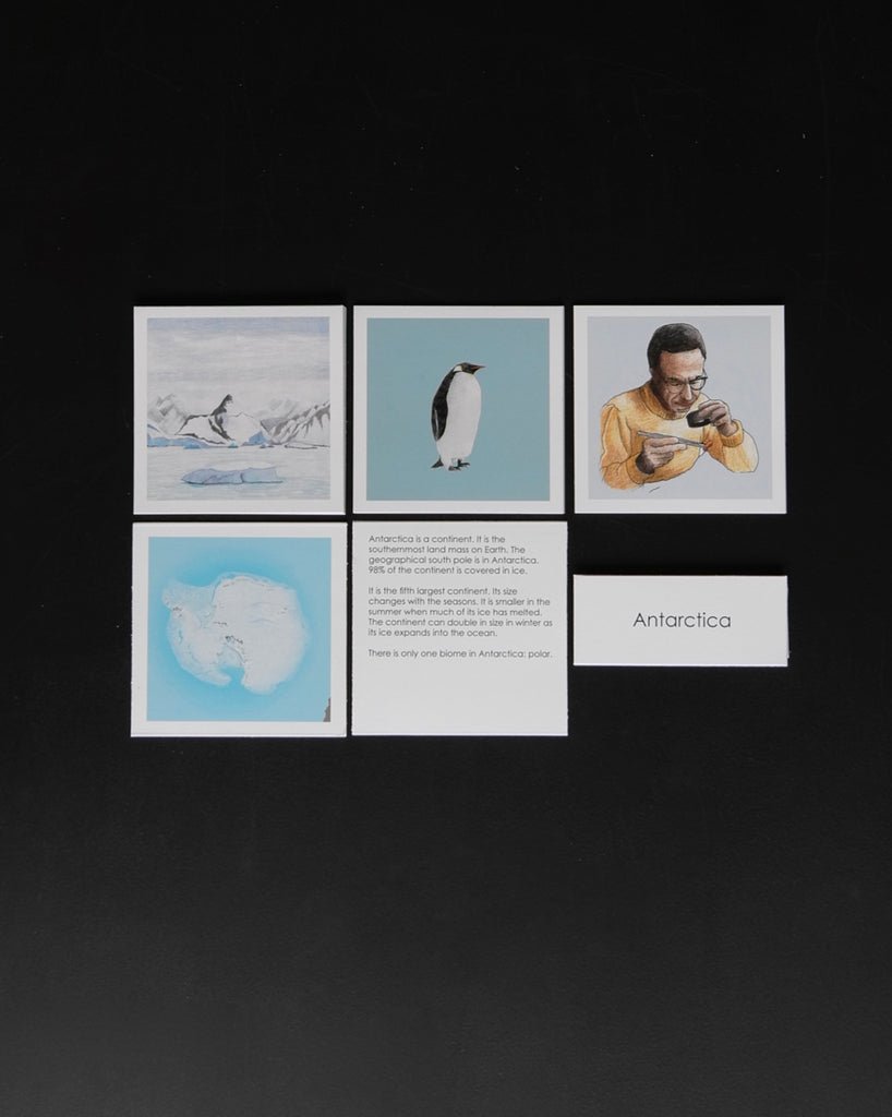 Antarctica Biome Cards-Elementary