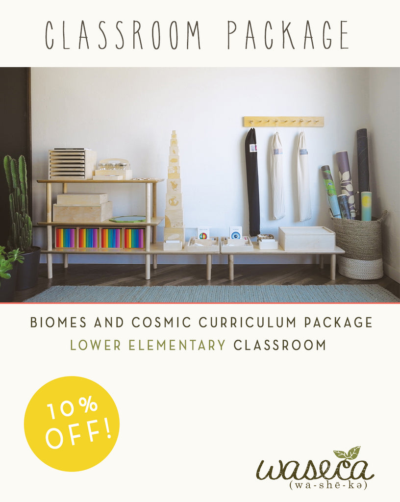 Biomes and Cosmic Curriculum Package-Lower Elementary