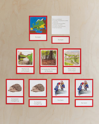 Europe Biome Cards-Primary
