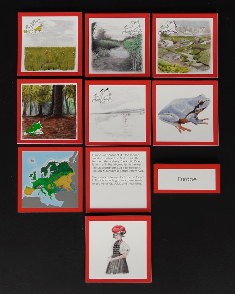 Europe Biome Cards-Elementary