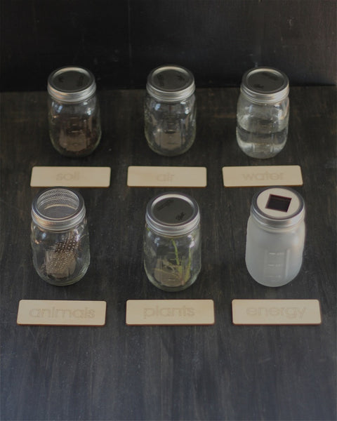 Parts of the Biome Jars