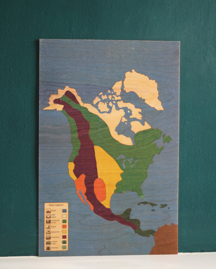 North America Biome Puzzle