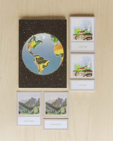 A Introduction to the Biomes with Curriculum-Primary