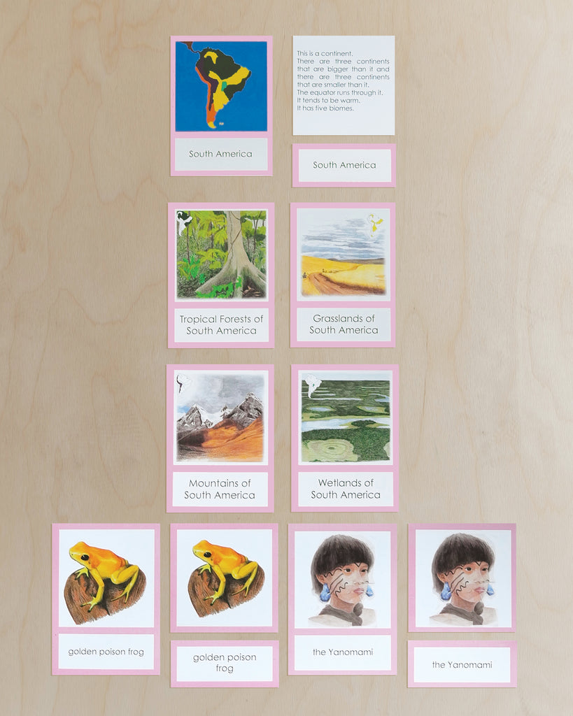 South America Biome Cards-Primary