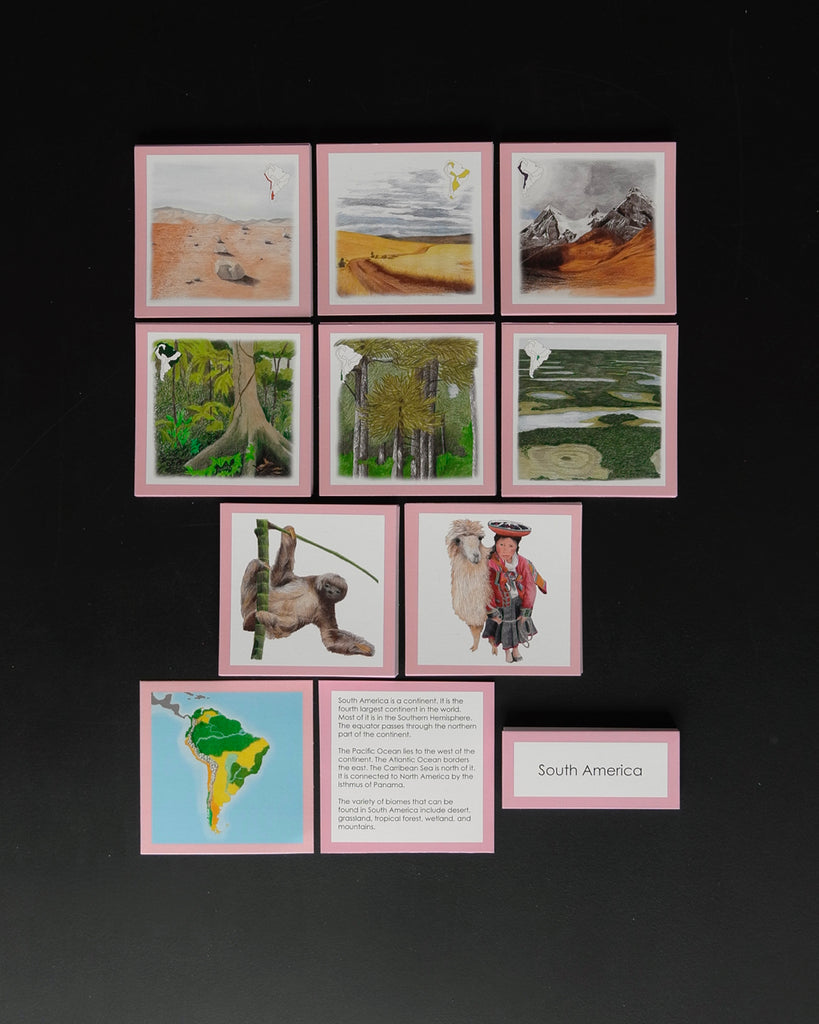 South America Biome Cards-Elementary