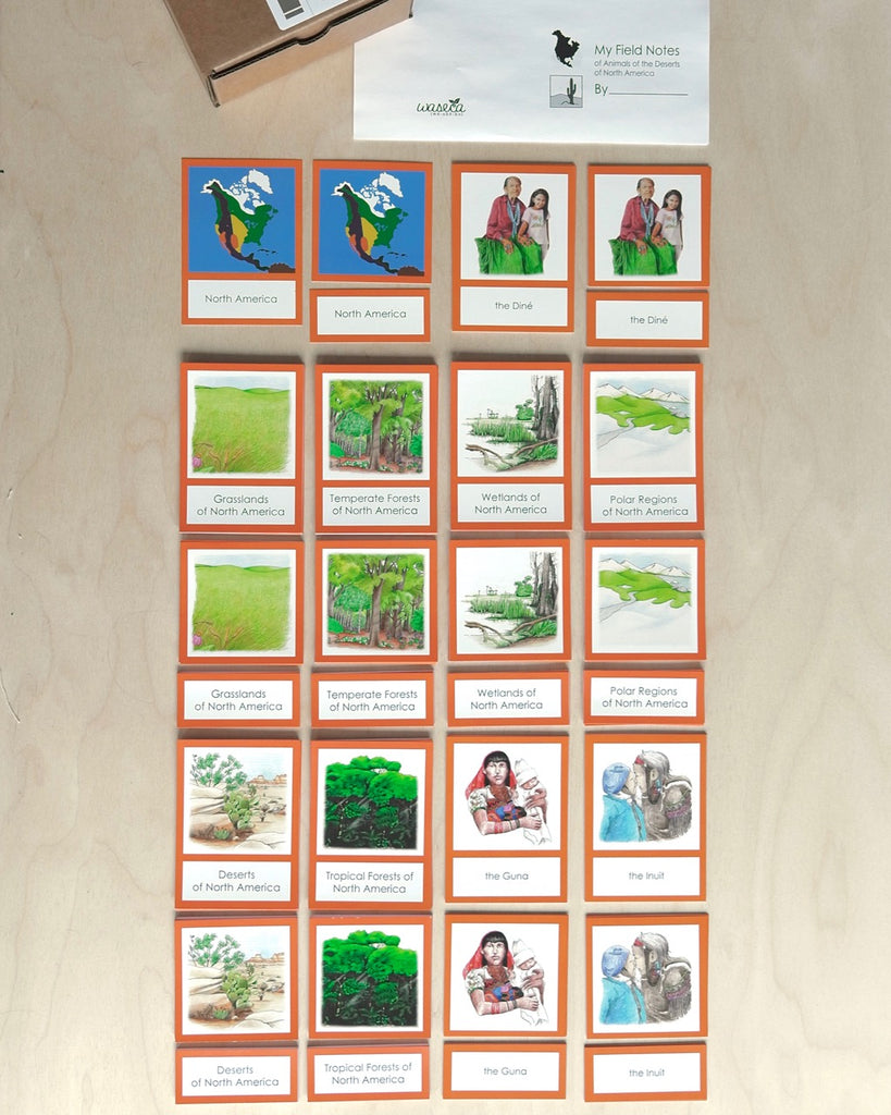 North America Biome Cards-Primary