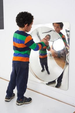Large Single Dome Acrylic Mirror Panel