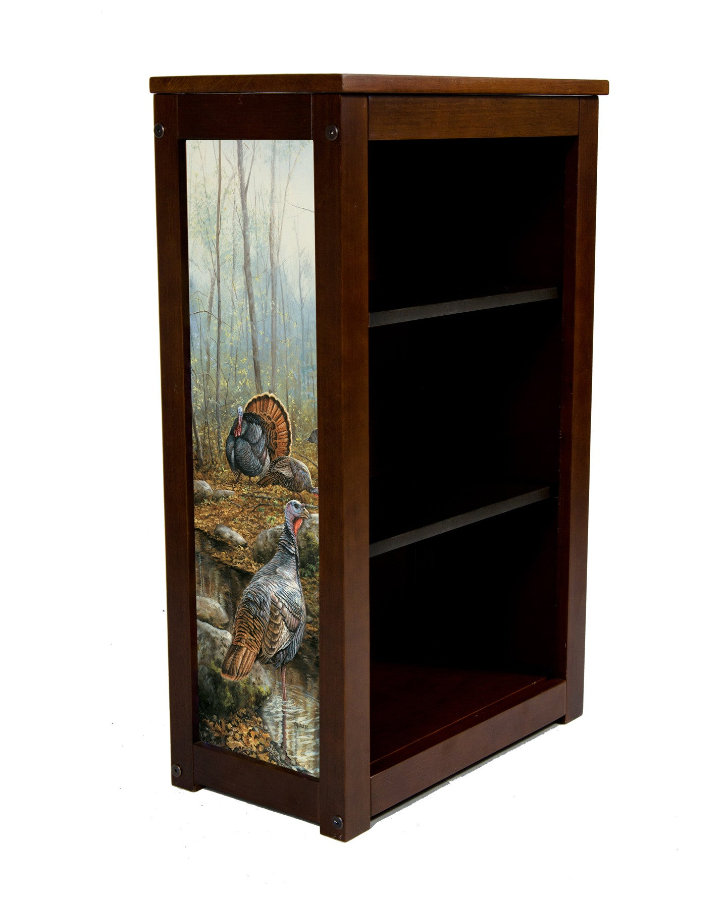Wild Turkey Book Cabinet | Backwaters Passage by Rosemary Millette