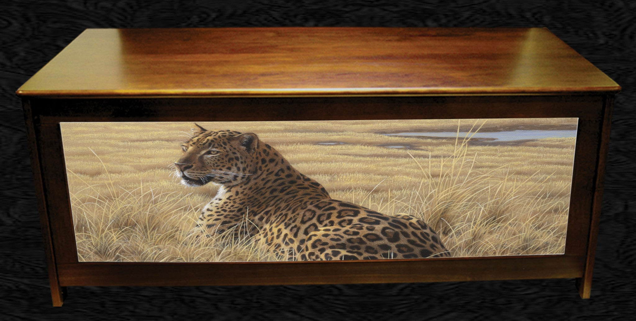 Leopard in Grass-Daniel Smith