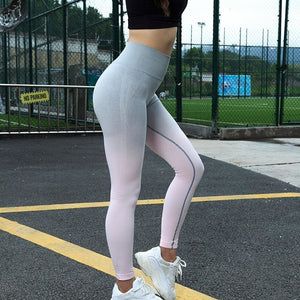 Legging talle alto y sin costuras GIGIL - luxury-leggings