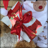 "Timothy Cole - 21"" Christmas 2018 Toddler Artist Bear by Emma's Bears - OOAK"