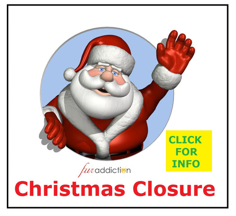 Christmas 2018 Closure Info