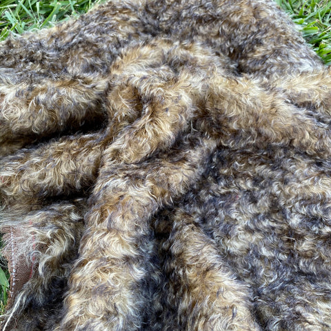 Old Gold - tipped curly kid mohair