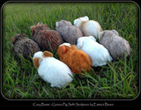 PATTERN - Realistic Guinea Pig Soft Sculpture