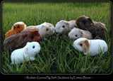 Digital PATTERN - Realistic Guinea Pig Soft Sculpture