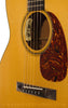 Collings 0001 G Acoustic Guitar - detail