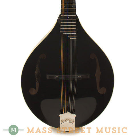Collings MT GT A Style Mandolin - front close