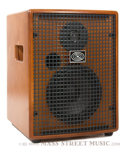 Schertler Amps - Jam 100
