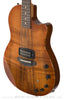 Anderson Guitars Crowdster Plus Koa Electric - angle