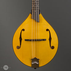 Collings Mandolins - MT GT Honey Amber