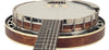 Recording King Banjos - Madison 6-String Resonator
