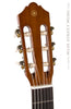 Yamaha Acoustic Guitars - CGS103AII