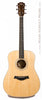 Taylor Acoustic Guitars - DN3