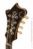 Gibson F4 mandolin - 1917 - front headstock