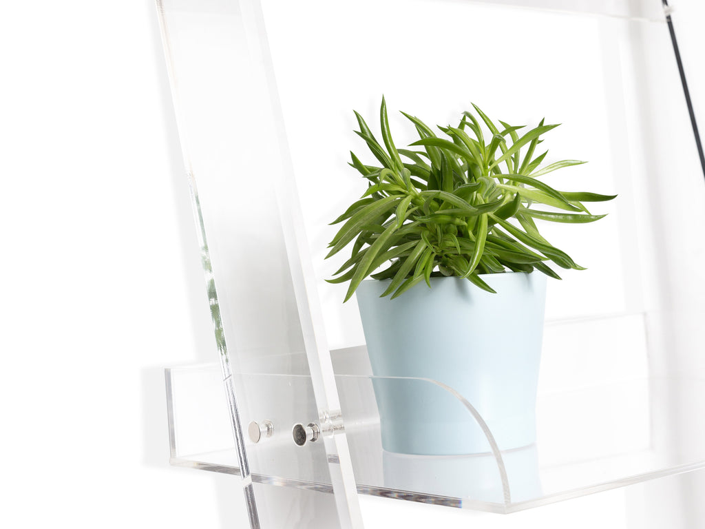 Clear Leaning Shelf - The Everset