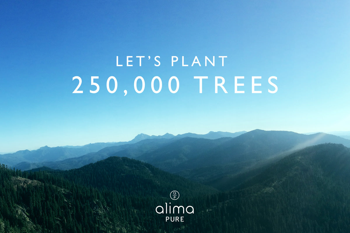 Alima Pure is committed to planting 250000 trees in 2020