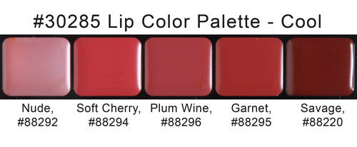 cool shades lip palette